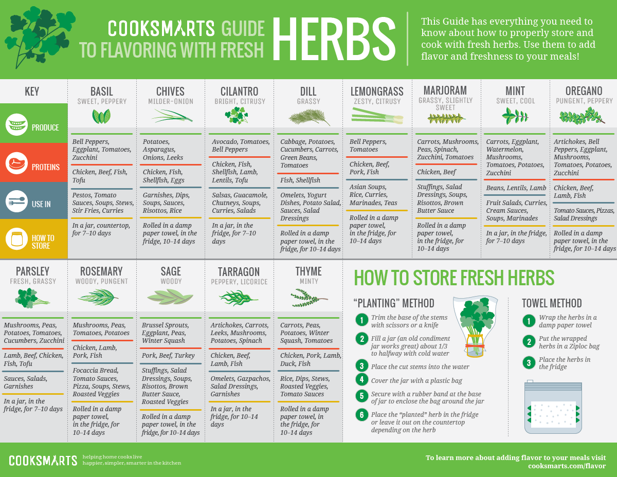 Fresh Herbs - Annual, Biennial or Perennial? - The ... |Herbs Chart